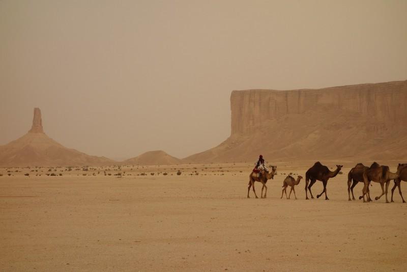 karavana v Saudské Arábii