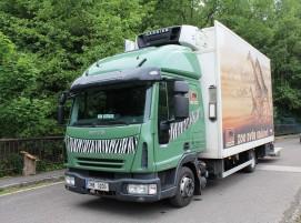 Převoz hrošic Ivecem